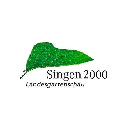 Singen 2000